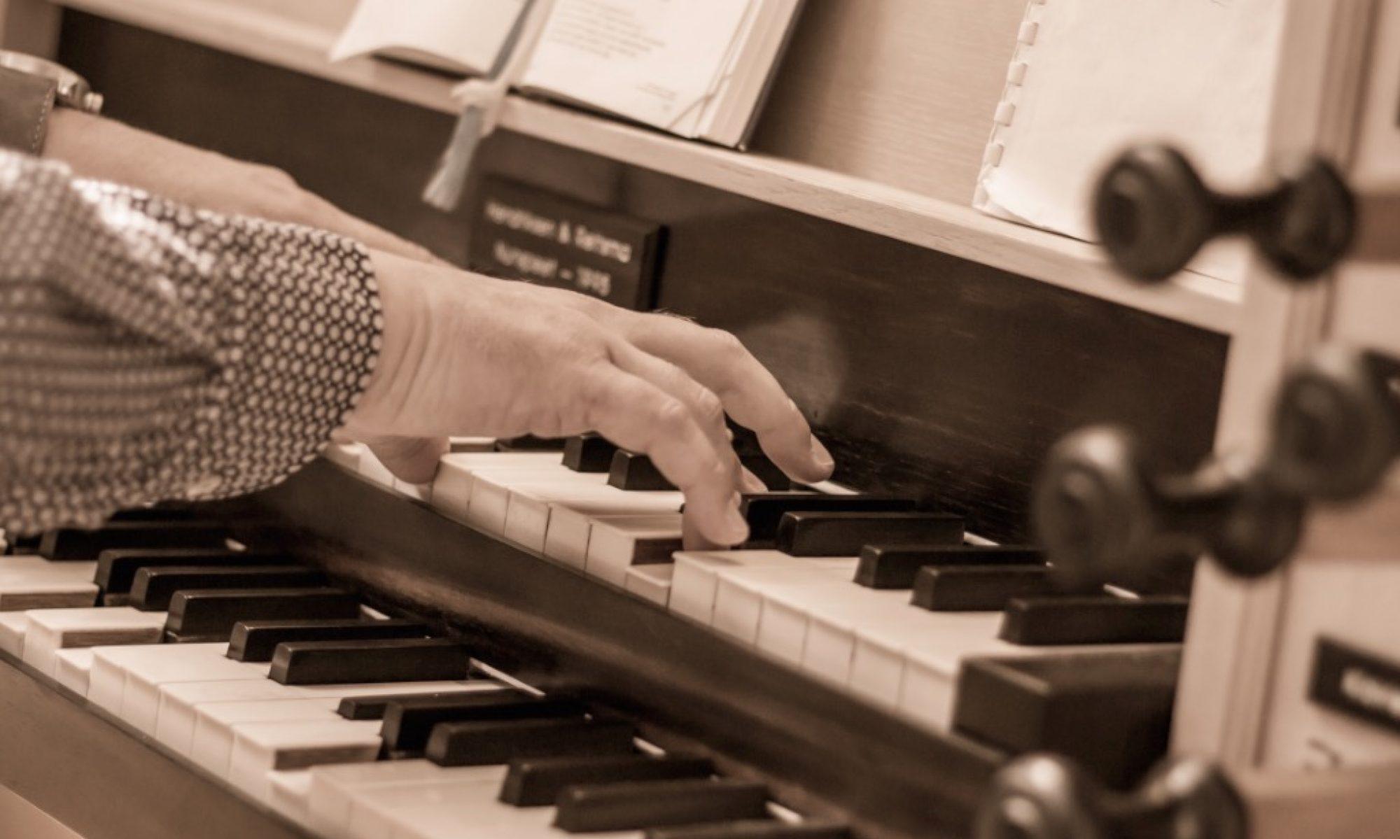 Frank Kaman - musicus